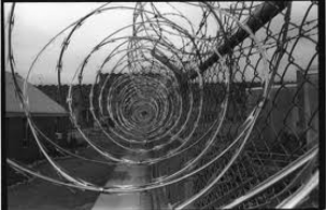prison-barbed-wire
